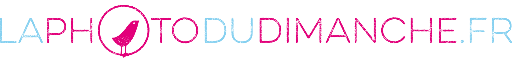 logo_pdd2